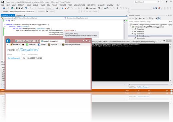 Statik sunulan dosyalarım klasörü